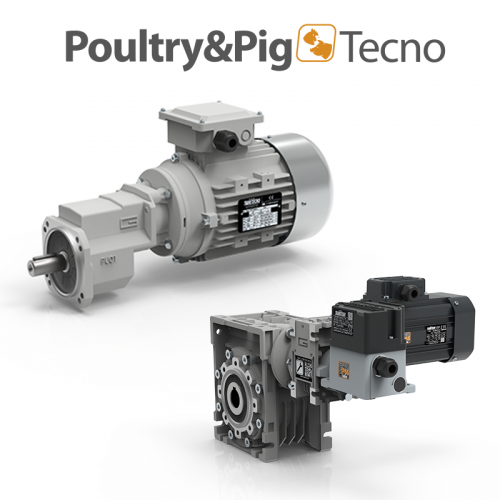 Poultry Pigtecno.